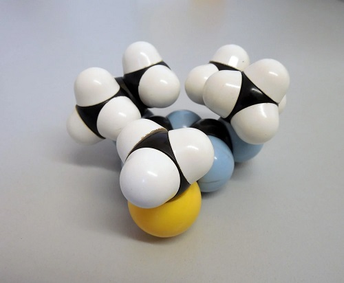 Acetyl-L-Carnitine HCl APEX-TX5
