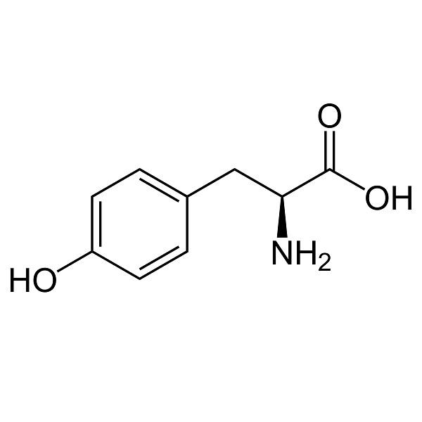 L-Tyrosine Ingredient